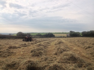 LAYP Turning hay using a tether