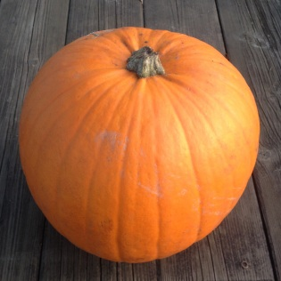 From seeds to skin, I'll eat whole my pumpkin